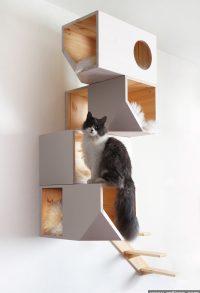 Catissa 4 Y Cat House
