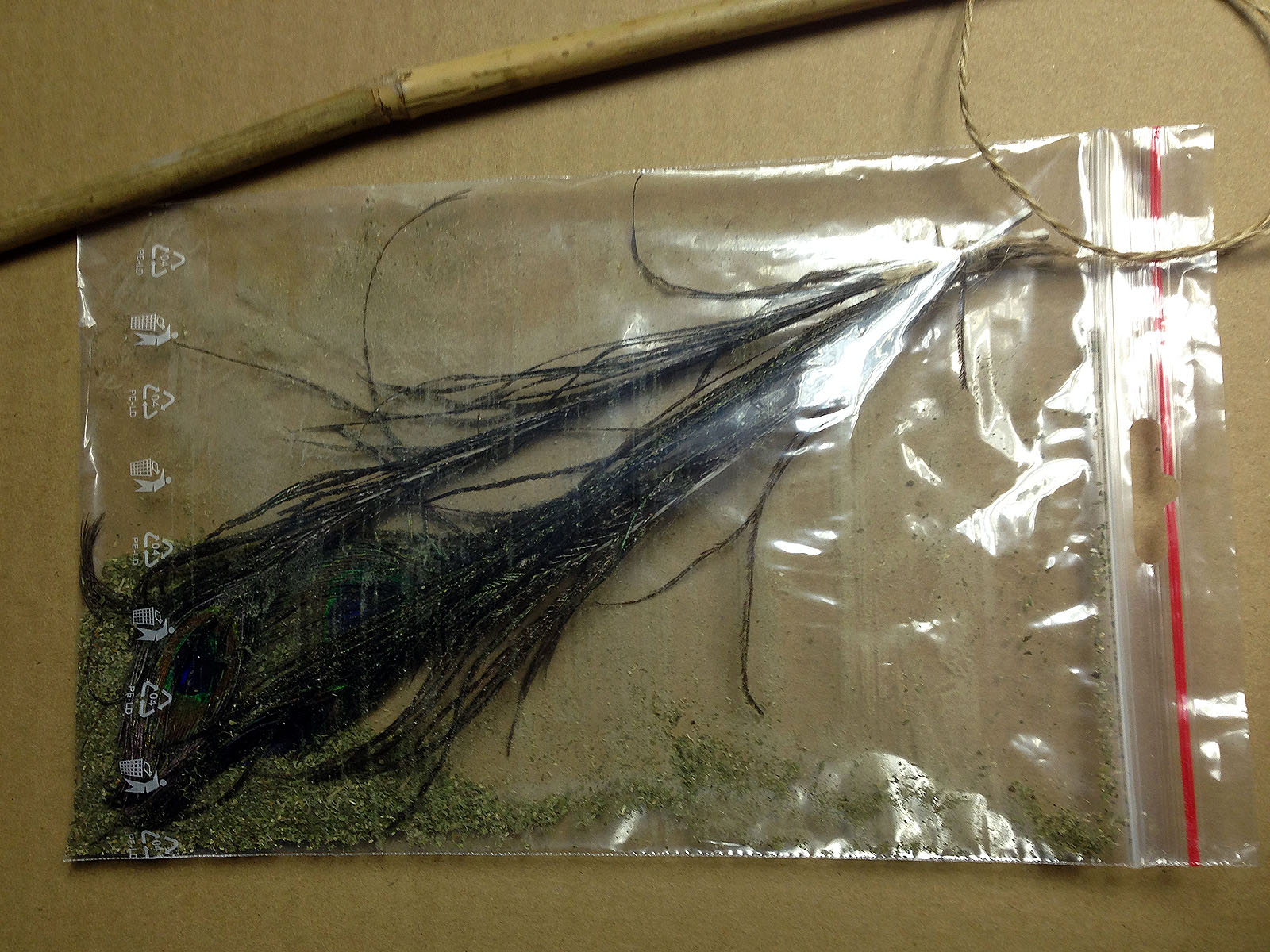 Feathers in the bag of catnip